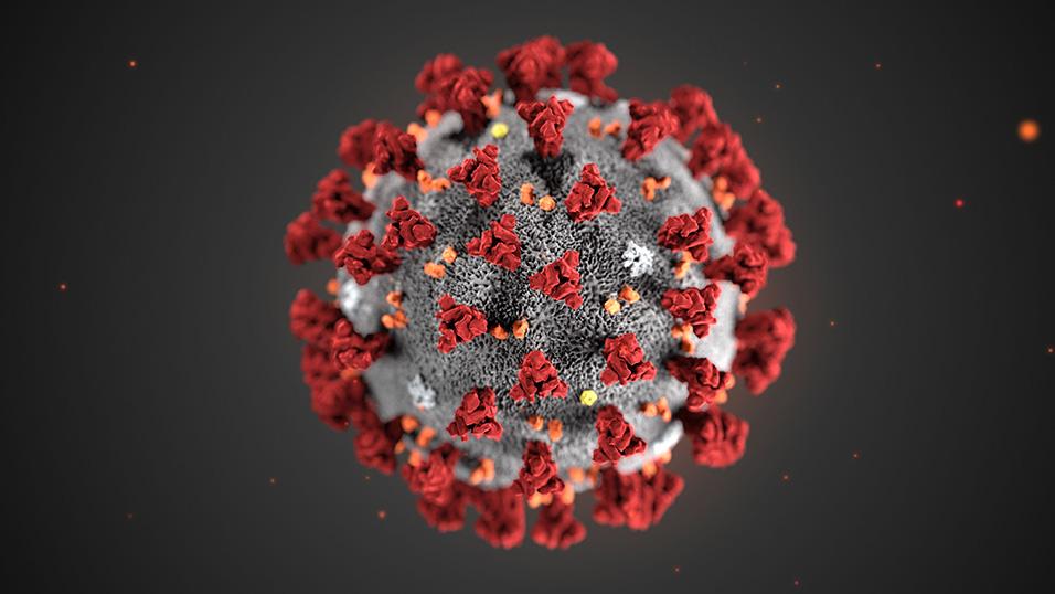 Coronavirus finalmente isolato allo Spallanzani